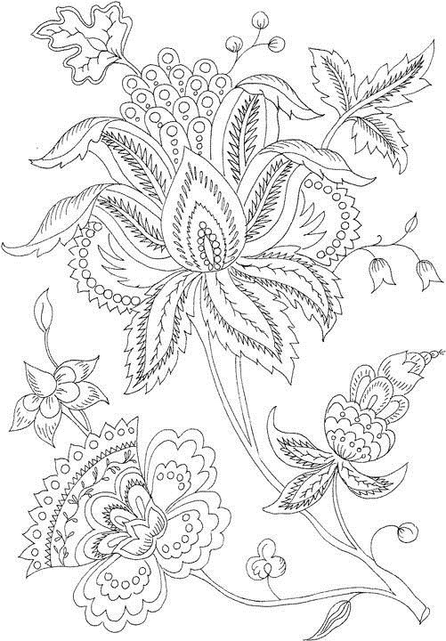 free student plant coloring pages - photo#15