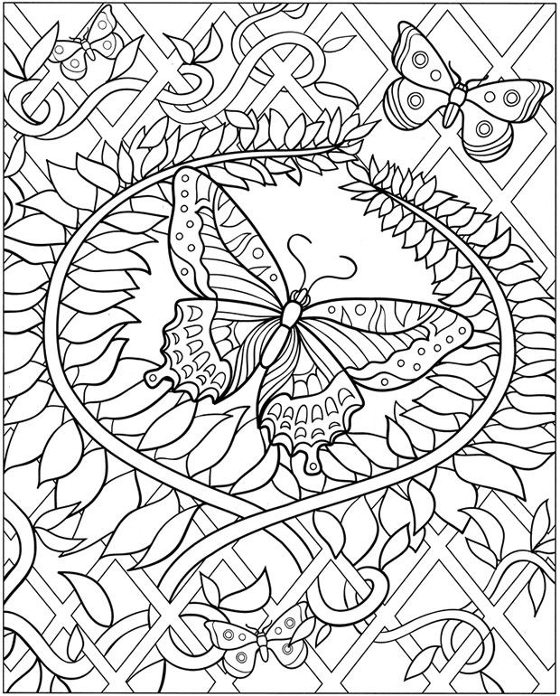 Image Result For Owl Coloring Pages